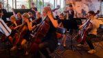 2019 06 21 Cello Sectie Zomerconcert Juso Jo Symfonieorkest Bloembollentstreek