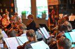 2019 06 21 Violen Juso Zomerconcert Juso Jo Symfonieorkest Bloembollentstreek